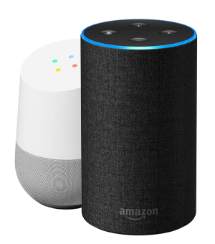 Google Home and Amazon Alexa